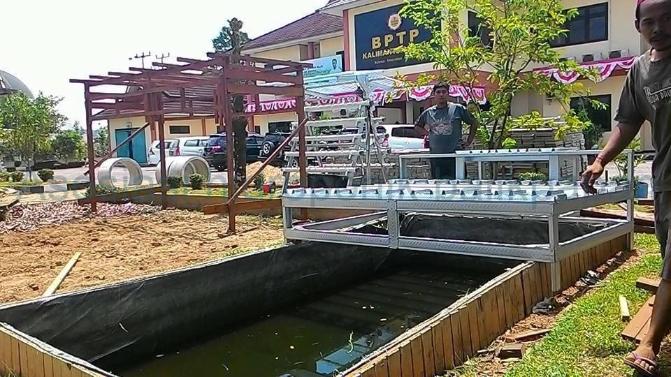 Aquaponik – Hidroponik BPTP Samarinda