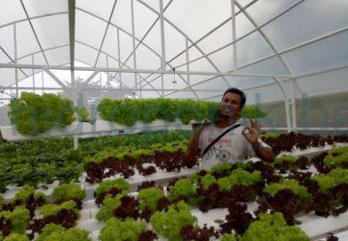Selamat atas dibukanya Gifta Garden Km23 pemilik bapak rudi dandito